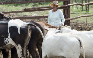 Femmes et environnement : la Fondation se mobilise