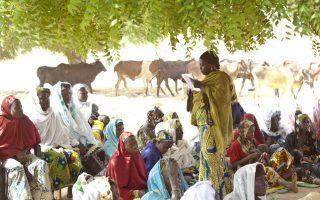 Femmes & agriculture dans les pays en développement