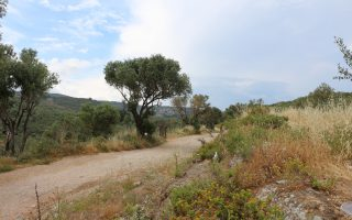Visite du camp de réfugié.e.s de Moria sur l'île de Lesbos en Grèce