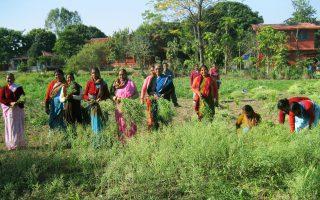 De l'Inde à la France, la Fondation visite les projets qu'elle soutient