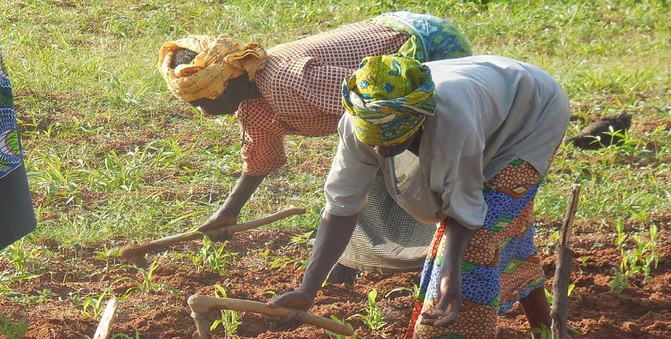 Renforcer le rôle des femmes dans la protection de l'environnement