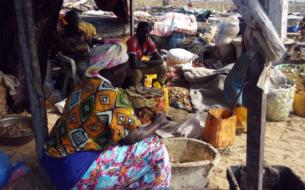Valorisation des déchets halieutiques et d'accès à une énergie durable pour les femmes transformatrices de poisson