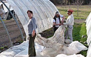Dynamiser les opportunités économiques des agricultrices en renforçant leurs connaissances techniques sur les pratiques agroécologiques