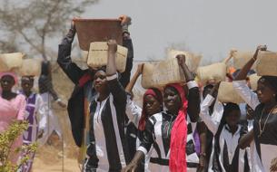 Garantir la sécurité alimentaire des populations rurales par la formation des femmes au maraîchage au sein d'une ferme agroécologique