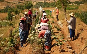 To promote sustainable farming methods and strengthen the role of women in agroecological practices.