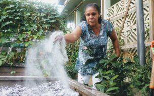 Former des femmes retraitées et/ou handicapées à des pratiques agroécologiques afin de leur assurer la sécurité alimentaire
