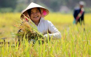 Promouvoir la place de femmes issues de minorités ethniques dans la gestion durable des ressources naturelles et la création d'activités écotouristiques