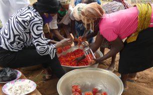 Accompagner des agricultrices dans une activité de valorisation des surplus de récoltes de tomates en les transformant en conserves et en jus